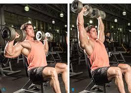 Bench Press Hypertrophy 16 Laws Of Shoulder Training