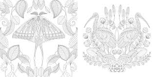 amazon millie marotta u0027s tropical wonderland colouring book