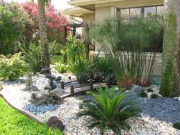Backyard Plants Ideas Popular Of Landscaping Plant Ideas How To Fill Garden Design With