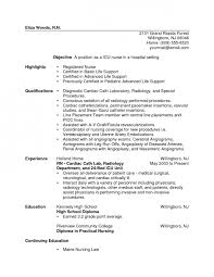 Critical Care Rn Resume How To Make A Plan For An Essay The Mystic Archives Of Dantalian