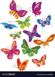 colorful butterfly set royalty free vector image