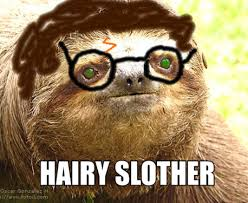 Sloth Jokes Meme - sloths why you so meme slothmania