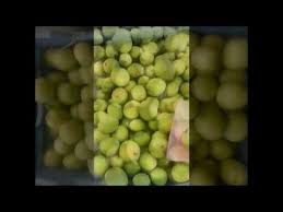 fruit delivery companies fresh fruit deliveries