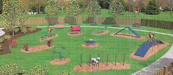 Backyard Agility Course Ventnor Community Fund