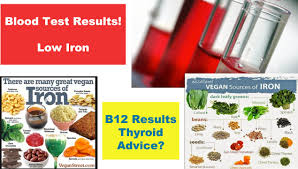 low iron blood test results u0026 advice youtube