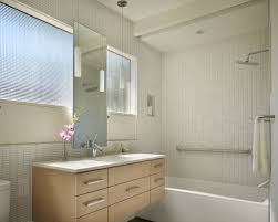 Bathroom Cabinets Seattle Light Colored Cabinets Bathroom Ideas Houzz