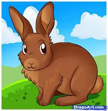 draw bunny rabbit step step forest animals animals