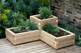 creative of wooden raised beds for garden treated lumber vegetable