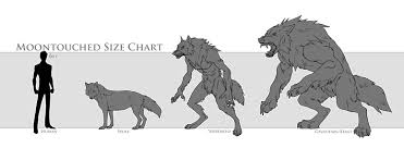 werewolves appearance forms and information by moontouched on