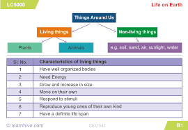 learnhive cbse grade 6 science living and non living things