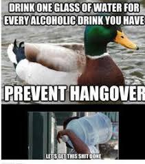 Hangover Memes - best 25 hangover meme ideas on pinterest hangover humor