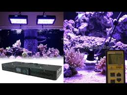 led aquarium lights for reef tanks euphotica lite 16 dimmable full color spectrum saltwater led