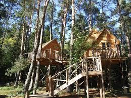 chambre d hote cabane dans les arbres comment construire une cabane dans un arbre newzy executive