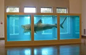 damien hirst s the physical impossibility of in the mind of