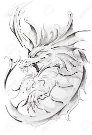 tattoo sketch of medieval dragon hand made stock photo picture