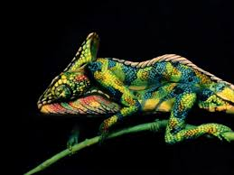 chameleon body paint optical illusion business insider