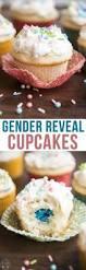 gender reveal cupcakes u2013 like mother like daughter