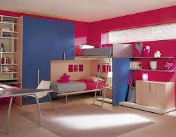 Pink Themed Bedroom - the cute pink bedroom ideas home furniture and decor