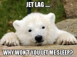 Jet Lag Meme - jet lag why won t you let me sleep popular opinion bear