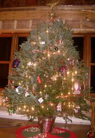 christmas tree stand five of us