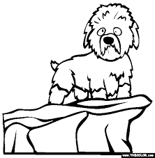dog coloring pages online dogs online coloring pages page 2
