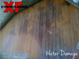 xtreme flooring10 things to avoid on hardwood floors xtreme flooring