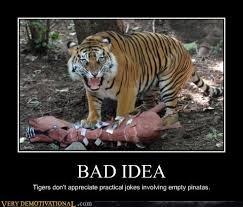 Tiger Meme - terrible tiger memes image memes at relatably com