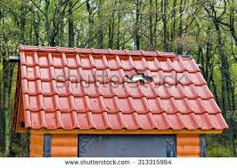 The New Small House Hellhole Stock Images Royalty Free Images U0026 Vectors Shutterstock