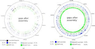 Genome Mapping Improving Ancient Dna Genome Assembly Peerj