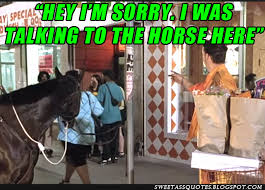 Half Baked Meme - half baked hey sorry i was talking to the horse over here meme