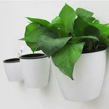 compare prices on flower pots designs online shopping buy low
