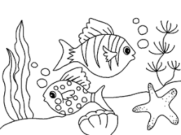 free printable fish and sea star coloring book for kids coloring