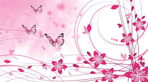 Pink Colour by Pink Color Wallpapers Free Download Group 79