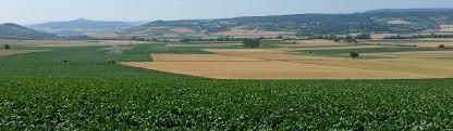 chambre agriculture 63 zones vulnérables chambre d agriculture du puy de dôme