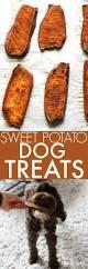 best 25 sweet potato dog treats ideas on pinterest dog chews