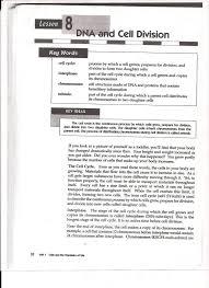 ms friedman u0027s biology mitosis worksheet