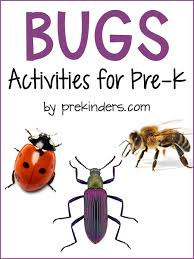 bugs theme prekinders
