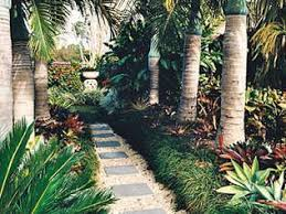 514 best garden tropicalis images on pinterest landscaping