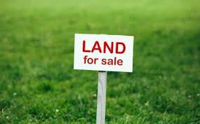 land for sale kalpana nagar latur treeland properties