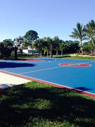 the pro dunk diamond basketball goal is surrounded palm trees and