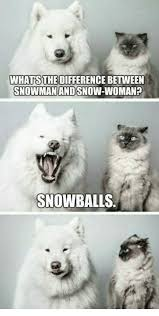 Snowman Meme - whats the difference between snowman and snow woman snowballs