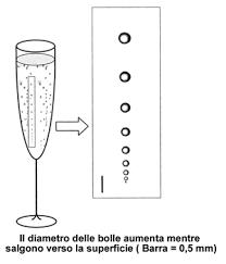 posizione bicchieri in tavola la flute
