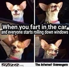 Fart Meme - when you fart in the car meme pmslweb