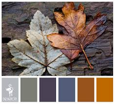 Winter Color Schemes by Winter Leaves Grey Slate Blue Brown Beige Colour