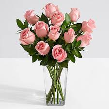 pink and roses one dozen stemmed pink roses