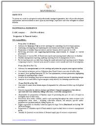 Senior Financial Analyst Sample Resume by Cash Analyst Cover Letter