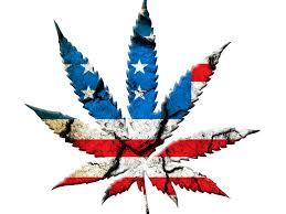 Pot Flag Marijuana Stocks 10 Must Buys Ahead Of Clinton White House Benzinga