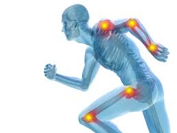 joint pain ingredients that can help your achy body staterra