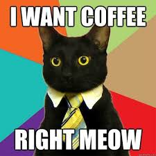 Coffee Meme Images - right meow funny coffee meme