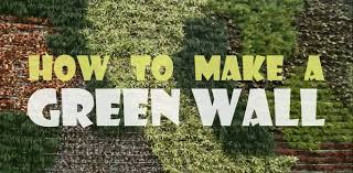 How To Make A Succulent Wall Garden by How To Make A Green Wall Youtube